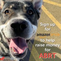 Amazon Smile for ABRT