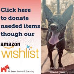 Donate through our Amazon Wishlist!