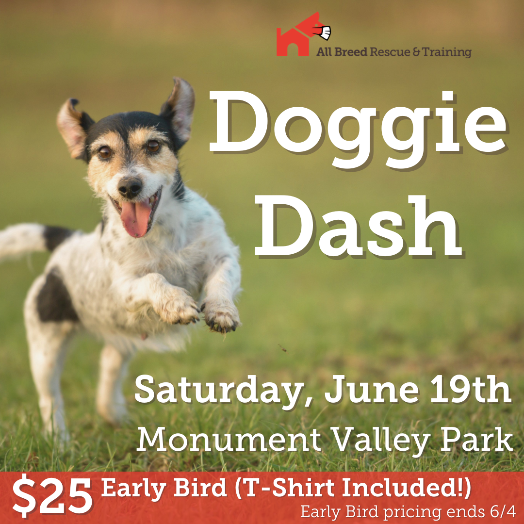 ABRT's Annual Doggie Dash on Saturday, June 19th at Monument Valley Park.  $25 Early bird price includes t-shirt!  Early bird prices end June 4th.  Click for more info.